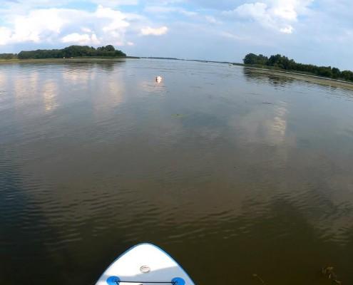 Tisza-tó sup